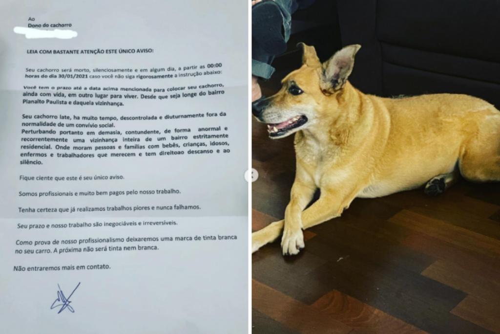 Família recebe carta anônima com ameaça de morte à cachorra: